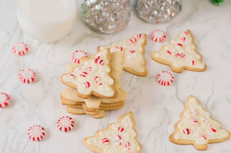 a dozen Candy Cane Forest Sugar Cookie Trees