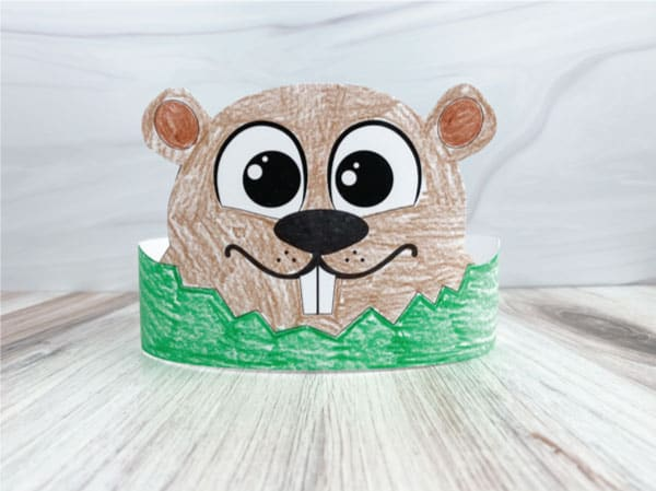 groundhog's day headband